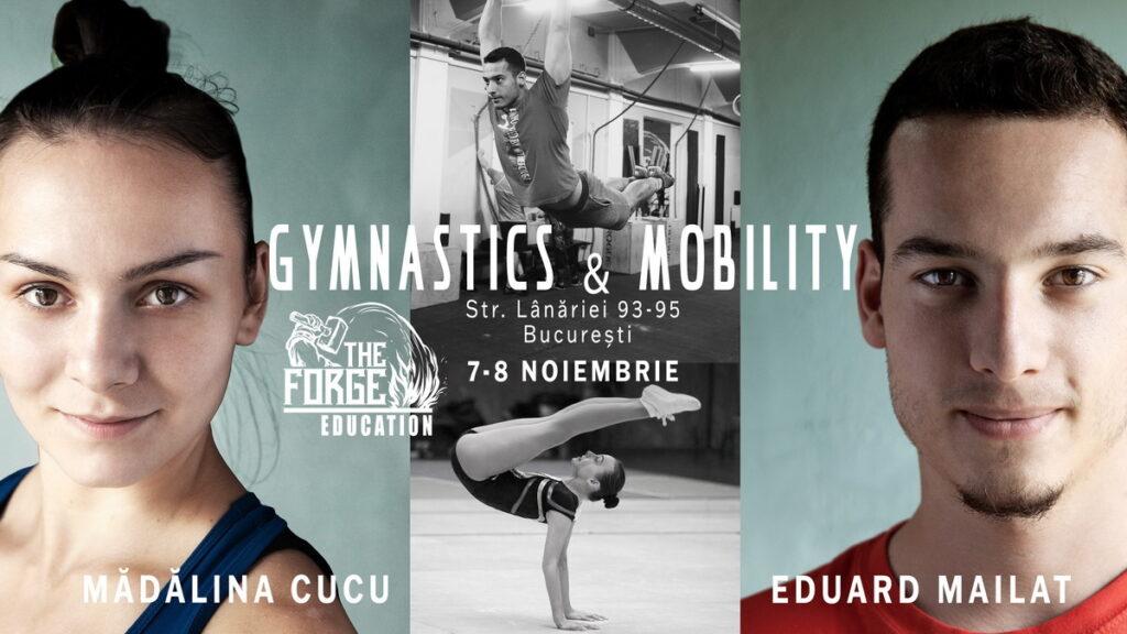 Gymnastics & Mobility Seminar